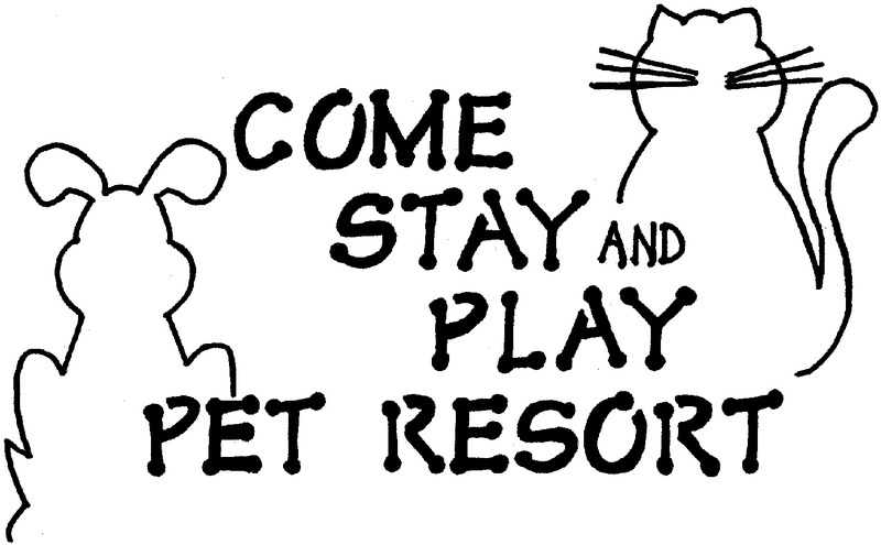 Come Stay and Play Pet Resort